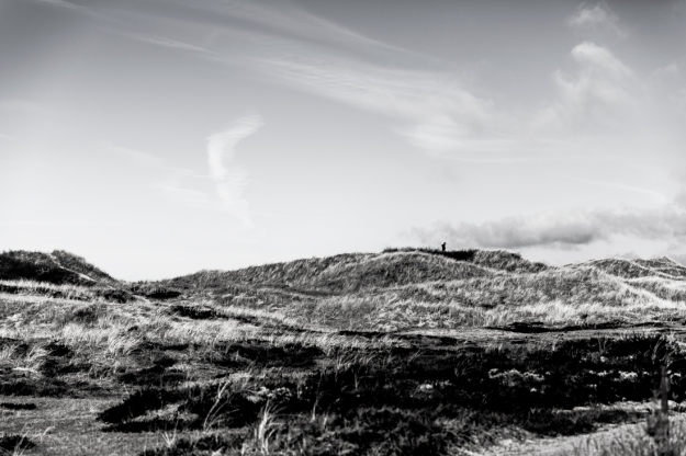 Ensam på kullen